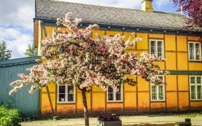 Taarbæk Ældreboliger bygget i 1978-29